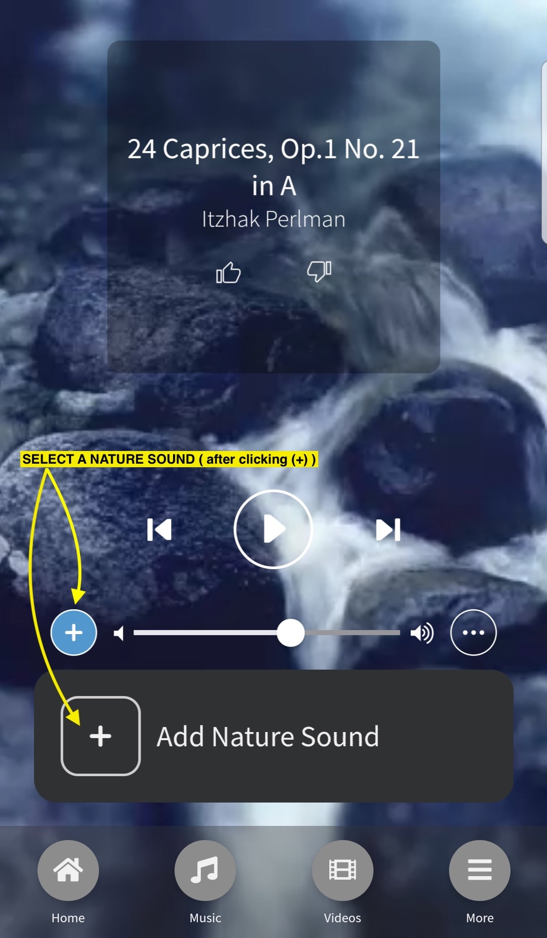 nature_sounds-new-1-fixed1.jpg